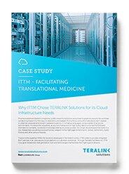 Teralink-Case-Study-ITTM
